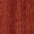 rainforest_collection_brazilian_cherry.jpg